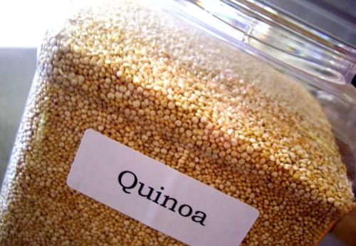 quinoa5dd27.jpg